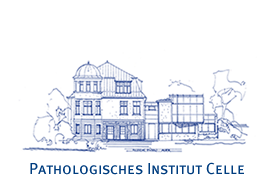 Pathologisches Institut Celle